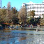井ノ頭公園のかいぼり